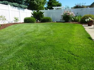 Fun Facts About Vinyl Fencing Materials