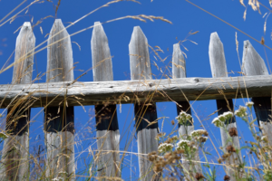 What You Should Do If Wind Blows Your Fence Over