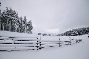 Snow fencing installation