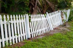 Rotting Fence Posts